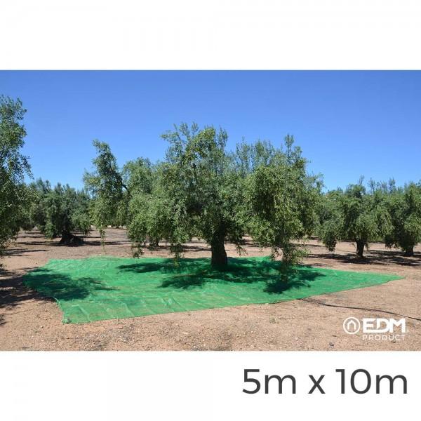 Manto para recoleccion verde aceituna 5x10m